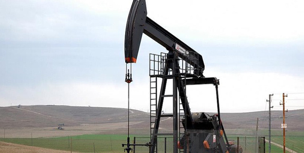 TPAO'dan petrol sahalarını genişletme kararı