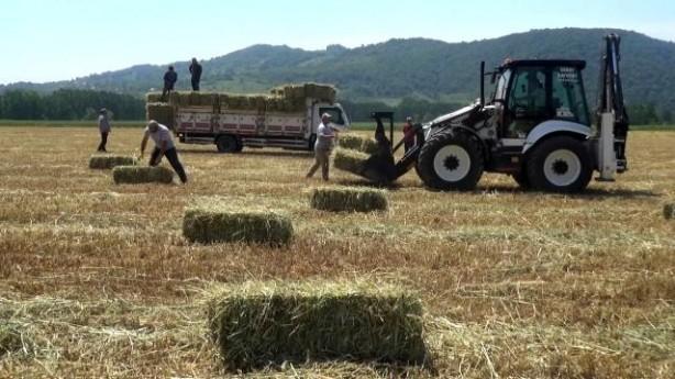Foto - Çiftçilere sunulan devlet desteklerinden de faydalanan Demirci ve Ercan, hayvan yemi üretimi yapacakları arazilerde kullanacakları traktör başta olmak üzere traktör ekipmanları ve makineleri de temin ederek kendi tarım işletmelerini kurdular.