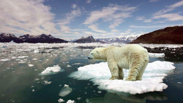 Foto - GEÇMİŞTEKİ RAPORLARDAN DA YARARLANDILAR - 13 bilim insanı, bugüne kadar hazırlanan pek çok raporu da baz alarak küresel ısınmanın uzun vadedeki etkilerini hesaplamayı başardı.