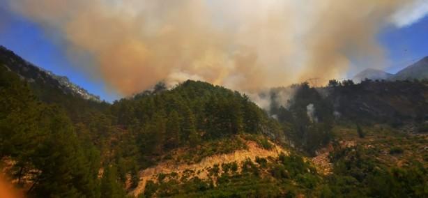 Bir yerde daha orman yangını! Tedbir amaçlı bir mahalle boşaltıldı