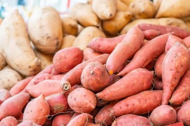 Foto - Tatlı patates