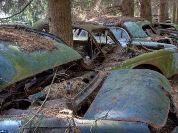 Dünyanın En Büyük Araba Mezarlığı Hikayesi çok Ilginç Fotoğraf 29