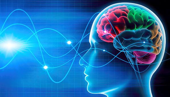 Foto - Beynin elektrik sinyallerinin senkronizasyonu üzerine çalışan nöroloji uzmanı Prof. Dr. Moran Cerf ve ekibi, birlikte zaman geçiren insanların beyin dalgalarının da zamanla 'benzer' görünmeye başladığını belirledi.