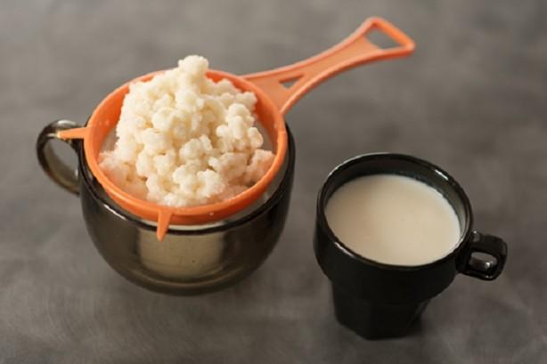 Foto - Kefir mayalamak için ihtiyacınız olan biraz süt biraz maya. Bu tarif denedikten sonra bir daha hazır kefir almak istemeyeceksiniz. Öncelikle bir litre sütü güzelce kaynatın ve üzerinde oluşan köpükleri alın.