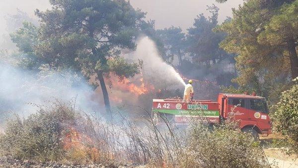 Foto - Çanakkale Valisi İlhami Aktaş, AA muhabirine yaptığı açıklamada, ekiplerin alevleri kontrol altına alabilmek için yoğun bir şekilde çalıştığını söyledi.