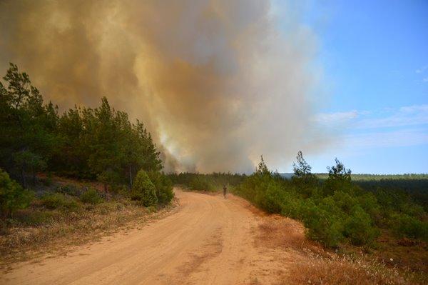 Foto - İşte yangından ve söndürme çalışmalarından kareler...