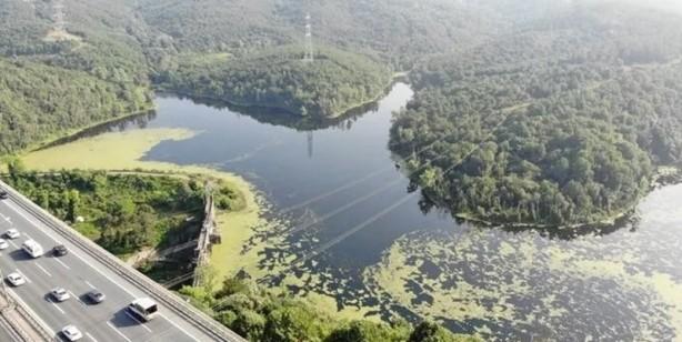Foto - Son zamanlarda Haliç ve İstanbul Boğazı'ndaki kirlilik dikkatleri çekerken, bu sefer de Elmalı Barajı'nın yüzeyi yeşille kaplandı.