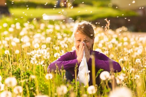 Foto - Polen alerjiniz aratabilir Polen alerjileri akla ilkbahar ve yaz aylarını getiriyor. Ancak sonbaharda da yabani ot polenleri çok sayıda kişide alerjiye neden olabilir. Yakupotu poleni, sonbahardaki en büyük alerji tetikleyicisidir. Genellikle Ağustos ayında serin geceler ve sıcak günlerle polen salmaya başlasa da, Eylül ve Ekim aylarına kadar sürebilir. Yaşadığınız yerde yetişmese bile, yakupotu poleni rüzgarda yüzlerce kilometre yol kat edebilir. İstanbul'da yakupotu poleni sıklıkla alerjiye neden olabilen bir polen türüdür.