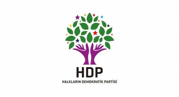 Foto -  9.7 HDP