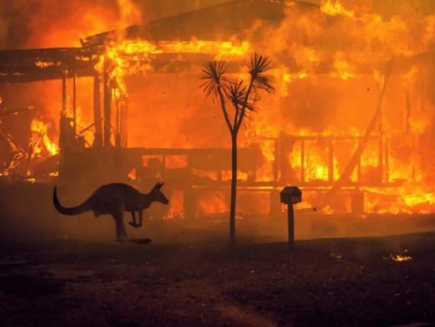 Foto - 2020 Ocak ayının tartışmasız en çok konuşulan olayı Avustralya'da aylardır devam eden ve bir türlü kontrol altına alınamayan orman yangınları oldu. Çıkan alevler sonucu 25 kişi hayatını kaybetti ve 8 milyon hektarlık orman ve yeşil alan yok oldu. Dünya Doğayı Koruma Vakfı (WWF) Avustralya'nın yaptığı son açıklamada yaklaşık 1,25 milyar hayvanın hayatını kaybettiğini tahmin ettiklerini belirtti. Yaklaşık 2000 bin ev küle dökerken, Avustralya Sigorta Kurumu toplam zararın 700 milyon Avustralya dolarını aştığını açıkladı.