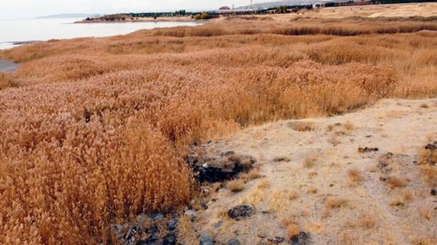 Foto - Van Gölü suları ile eski liman kalıntıları arasında yaklaşık 50 metrelik bir mesafenin olduğu belirtiliyor.