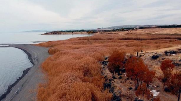Foto - Urartular döneminde liman olarak kullanılan alanda ortaya çıkan kalıntının yaklaşık 2 bin 750 yıl önce kullanılan limana ait olduğu belirtiliyor.