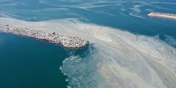 Marmara Denizi'ndeki kirliliğin nedenleri belli oldu: İşte müsilaja neden olan etkenler