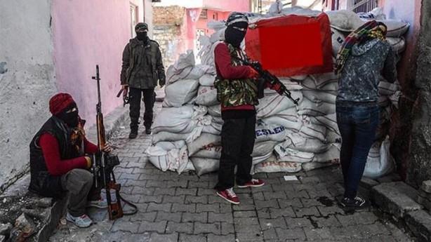 Foto - Ancak Mehmetçik'in bölgeye girmesiyle birlikte, PKK/YPG'li teröristler, kazdıkları hendeklerde tek tek etkisiz hale getirildi.