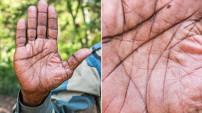 Bu ellerin sahipleri ne iş yapar?