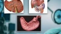 Bu organlar olmadan da yaşamınızı sürdürebilirsiniz