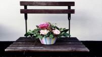 Canlı çiçeklerin ömrü nasıl uzatılır? İşte cevabı...