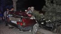 İnanılmaz trafik kazaları!
