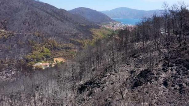 Foto - Türkiye'de orman yangınları ile mücadele devam ederken yangın sonrası felaketin boyutu gözler önüne seriliyor.