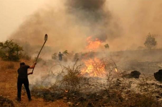 Foto - Denizli'nin Pamukkale ilçesinde, yerleşim yerine yakın bir noktada çıkan yangında, dumanları fark eden vatandaşlar, yangın bölgesine akın etti. Vatandaşlar, ağaç dalları, kürek ve tırmıklarla söndürme çalışmalarına yardım etti.