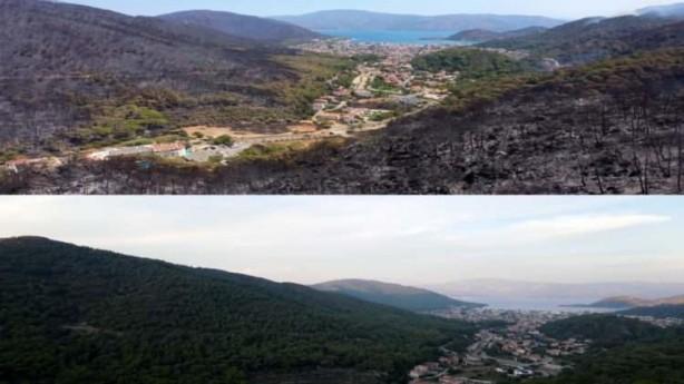 Foto - Havadan çekilen görüntülerde yemyeşil ilçe yerleşim yeri hariç tamamen siyaha büründüğü görüldü.