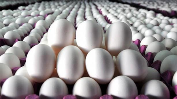 Foto - Küçük, orta, büyük ve çok büyük olarak farklı fiyatlandırılan yumurtada renkte de fiyat değişiyor. Örneğin beyaz çok büyük yumurta 0,45 TL iken kahverengi yumurta 0,57 TL'den satılıyor.
