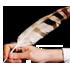 Hıyanet İşleri Başkanı Gülen Örgütü FETÖ-CHP, çatallı dilini Sümeyye Erdoğan'a uzatmış!