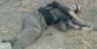 1 terörist öldürüldü