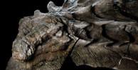 110 milyon senelik 'ejderha' bulundu