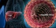 5 bitki ile Hepatit B'yi yenin!