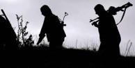 5 PKK'lı teslim oldu