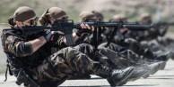 ABD ordusundan flaş Türkiye açıklaması!