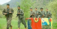 Terör örgütü PKK servete konacak!