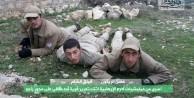 Afrin'de PKK'lı teröristler esir alındı