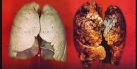 Akciğerlerinizi 3 günde temizleyin
