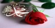 Allah'a karşı gelmekten sakın