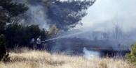 5 dönüm ormanlık alan yandı