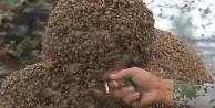 Arılara meydan okudu, sigarasını yaktı / VİDEO