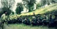 Bölgeden haberler geliyor… PKK o bölgeye terörist yığıyor
