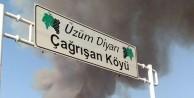 Bursa Osmangazi'de orman yangını çıktı