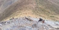 PKK'ya ağır darbe! Öldürüldüler
