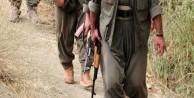 Diyarbakır Lice'de 6 PKK'lı yakalandı