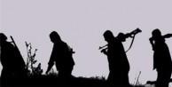 Diyarbakır'da 2 terörist öldürüldü