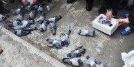 Güvercinleri zehirleyen bakın kim çıktı?