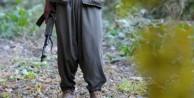 Hakkari'de bir PKK'lı teslim oldu