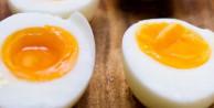 Her gün bir yumurta yerseniz vücudunuzda...