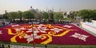 İşte dünyanın en büyük 'canlı lale' halısı