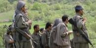 Operasyonlar sonrası kalan PKK'lı sayısı!