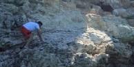 İzmir'de keçi kurtarma seferberliği