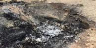 PKK'dan korkunç infaz: Muhtarı diri diri yaktılar!
